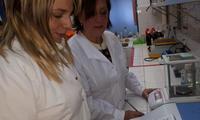 Cientificos hallaron droga anticancerigena planta salta 109902 193207