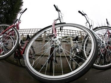 Donated bikes