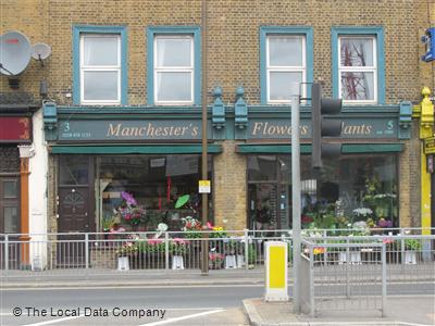 Manchester's Flowers & Plants