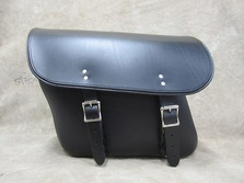 401 Economy Slight Angle  Leather Saddlebags