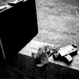 Polaroid_8lecool_m