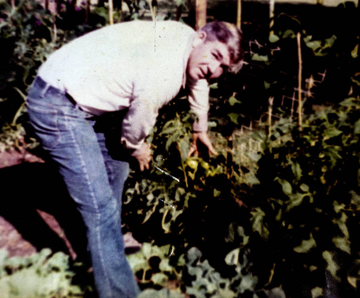 A man wearing blue jeans, tending a garden, looking at the camera.