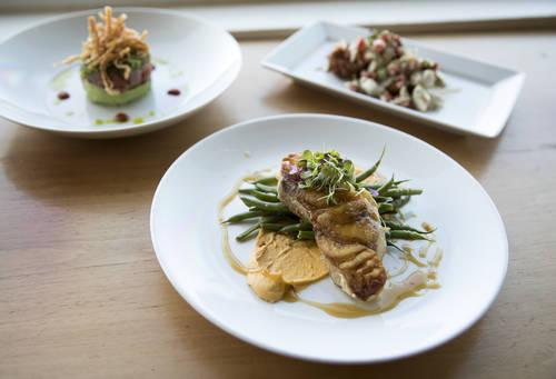 Ahi poke, rum-glazed grouper and jumbo lump crab stack  [MONICA HERNDON  |  Times]