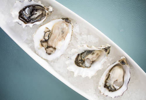 An assortment of oysters  [EVE EDELHEIT  |  Times]