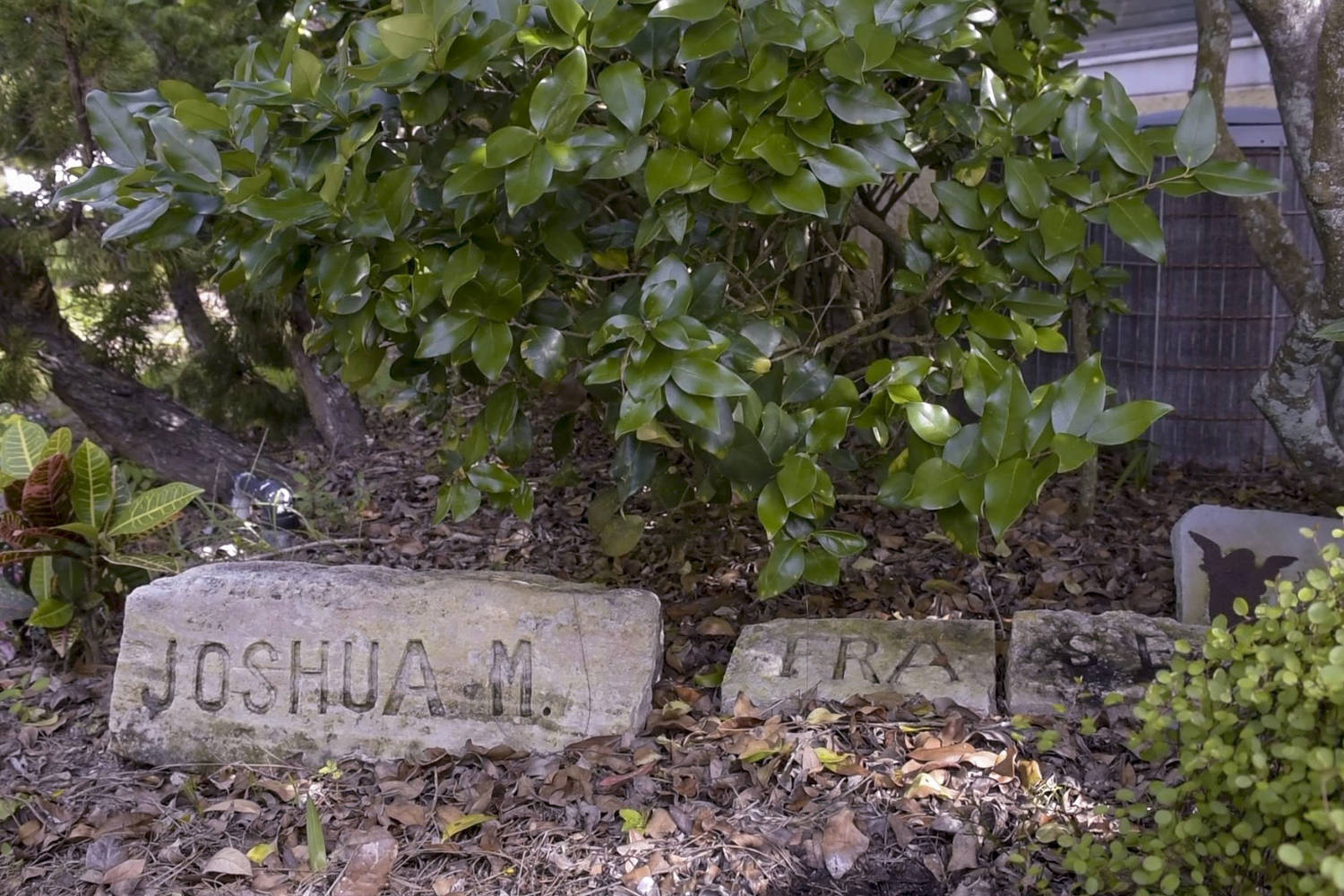 "Beneath a shrub is a low stone engraved, ""JOSHUA M."""