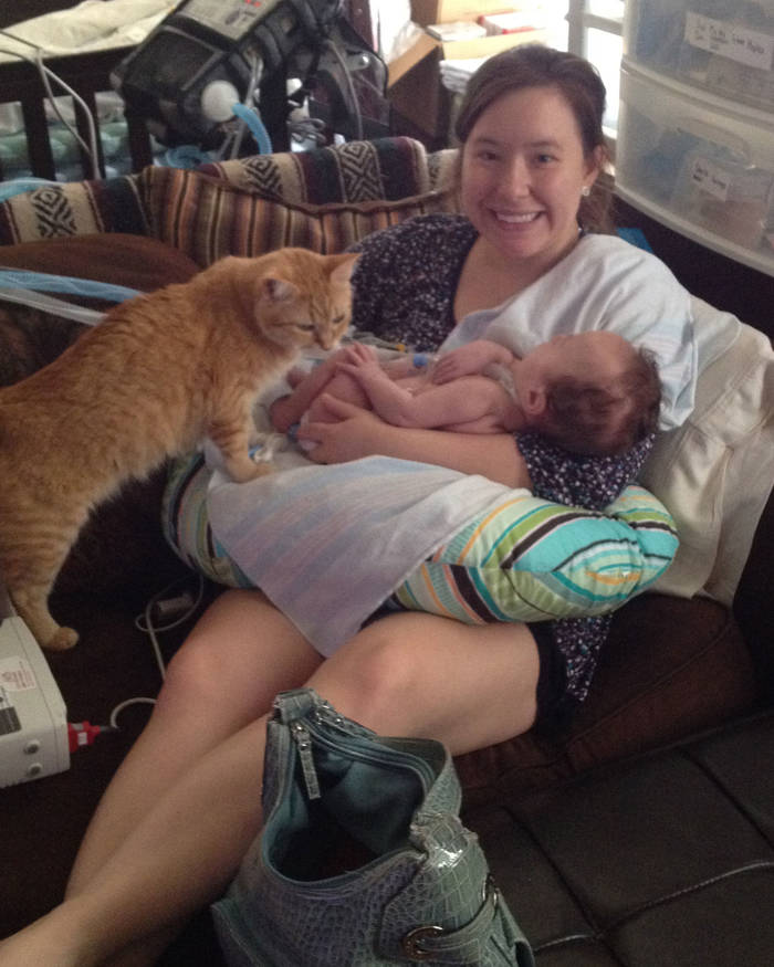 A smiling mother holds her baby in her lap, while the cat demands attention.