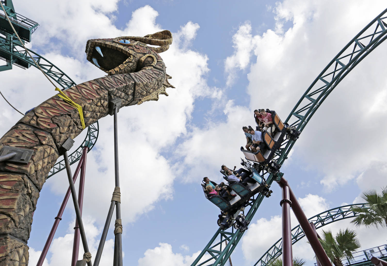Busch gardens things to do tampa bay times for Busch gardens tampa bay cobra s curse