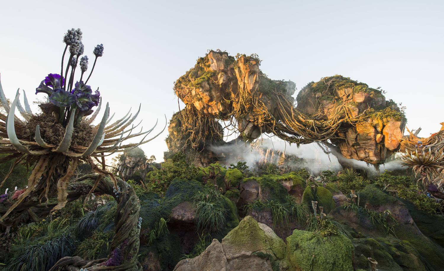 Disney | things-to-do | Tampa Bay Times