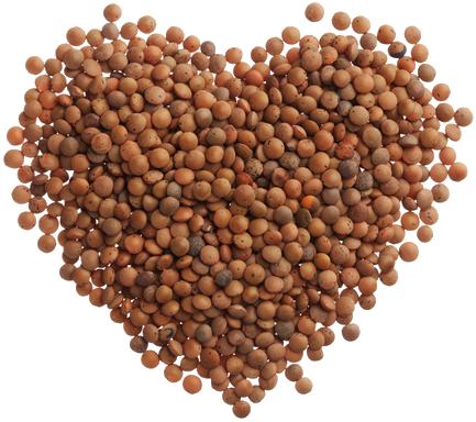 Lentils in shape of heart