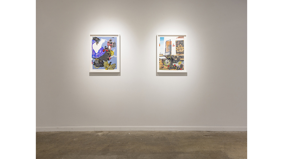 Nicole Awai: Envisioning the Liquid Land (installation view)