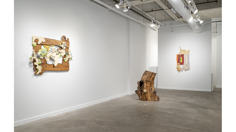 Carol Hepper: Four Directions (installation view)