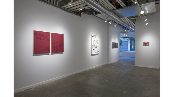 Splotch (installation view, Lesley Heller Workspace, New York). Image #207