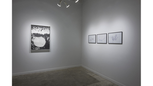 Splotch (installation view, Lesley Heller Workspace, New York). Image #208