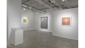 Splotch (installation view, Lesley Heller Workspace, New York). Image #209