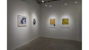 Splotch (installation view, Lesley Heller Workspace, New York). Image #210