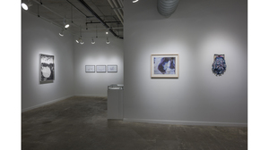 Splotch (installation view, Lesley Heller Workspace, New York). Image #211