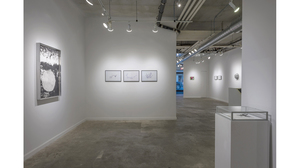 Splotch (installation view, Lesley Heller Workspace, New York). Image #212