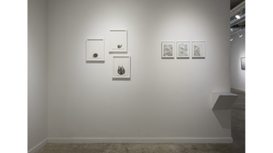 The Fabricated Drawing (installation view). Image #565