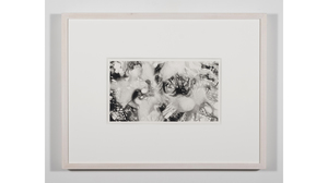 "Nene Humphrey, ""Slowspin Frame 00:31"", 2017, Charcoal on paper, 13 x 17 inches. Image #814"