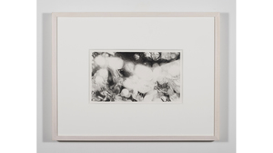 "Nene Humphrey, ""Slowspin Frame 3:04"", 2017, Charcoal on paper, 13 x 17 inches. Image #817"