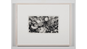 "Nene Humphrey, ""Slowspin Frame 11:59:42"", 2017, Charcoal on paper, 13 x 17 in.... Image #820"