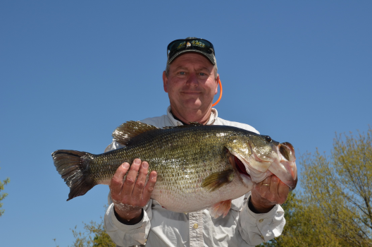 Toyota sharelunker season ends with mixed results for Lake palestine fishing
