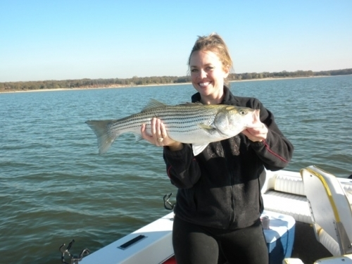 Lake texoma fishing report winter fishing for Fishing guides on lake texoma