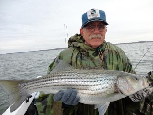 Lake texoma fishing report fishing before weather fronts for Lake texoma fishing report