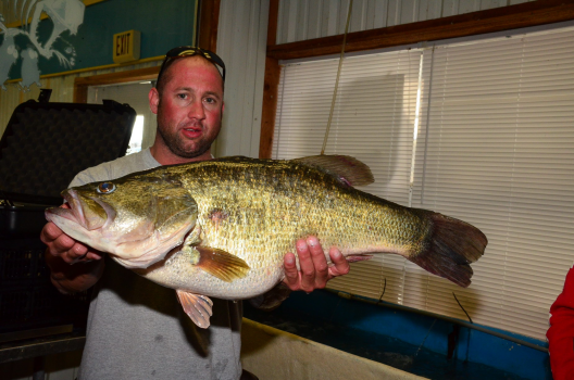 The sun came out and the lunkers came in for Toledo bend fishing report