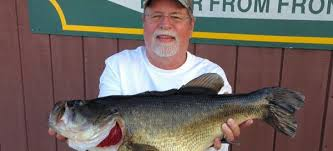 Mallet catches monster bass on wacky worm for Toledo bend fishing report