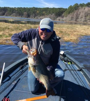 Steve rockweiler his two boys and son in law catch 31 for Toledo bend fishing report