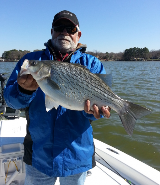 Feb 26 fishing report from guide service for Cedar creek lake fishing report