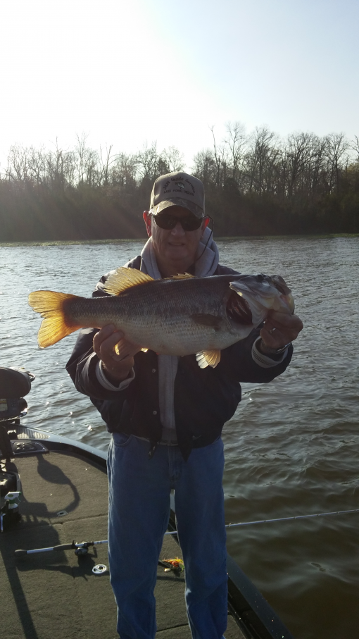 Lake fork fishing report for march 7 2016 for Lake fork texas fishing report