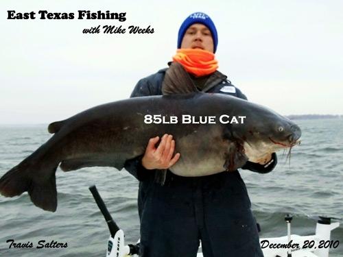 East texas fishing guide service lake palestine for Lake palestine fishing