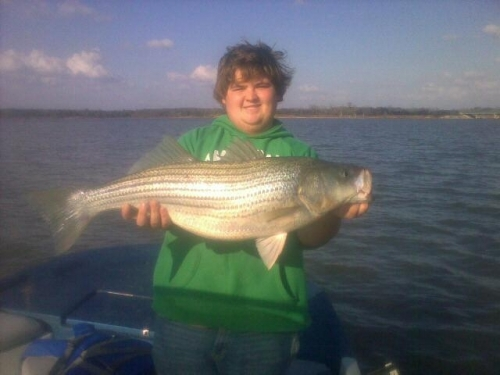 Little jon 39 s texoma guide service lake texoma for Fishing guides on lake texoma