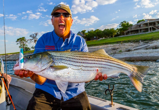Lake texoma fishing guides striper express lake texoma for Fishing guides on lake texoma