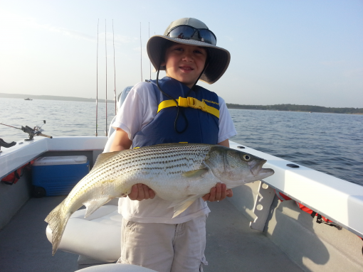 Striper hunter guide service capt stephen andre 39 lake for Fishing guides on lake texoma