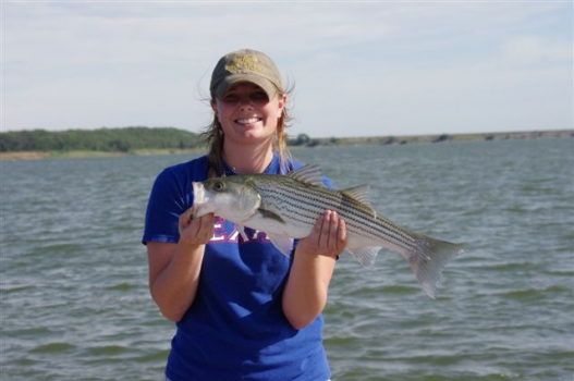 Reel easy striper guide service with troy harris lake texoma for Fishing guides on lake texoma