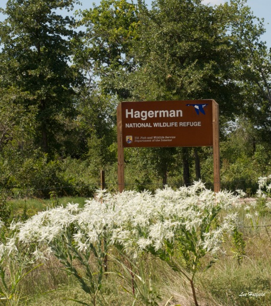 Hagerman NWR by Lee Hatfield