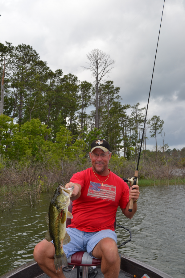Lake sam rayburn in pictures nice one near the twin for Sam rayburn lake fishing report