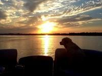 Sunset cruise with Lola May, our lake loving puppy