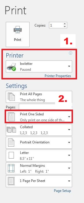 Image showing the print options in Microsoft Word.
