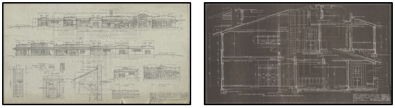 Image thumbnails from local TTU image collections