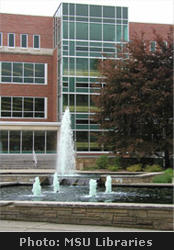 Main Library fountains