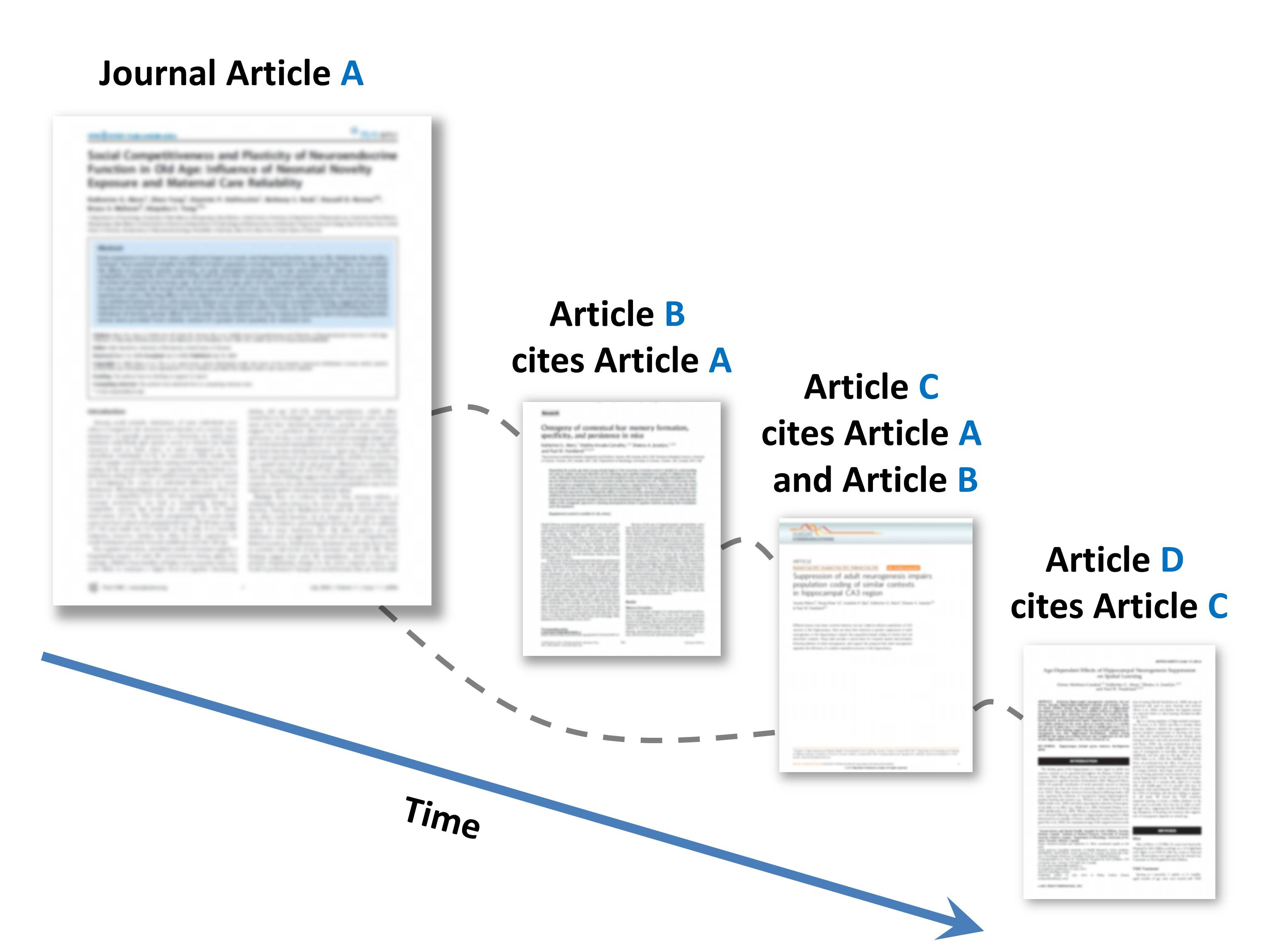 journal citation example