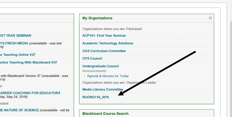 Picture of RUORG118_APA link in Blackboard My Organizations box