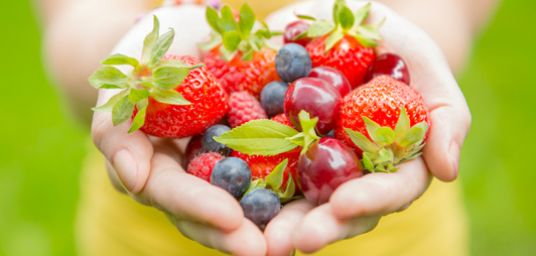 cupped hands holding strawberries and other berries