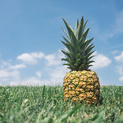 image of a pineapple