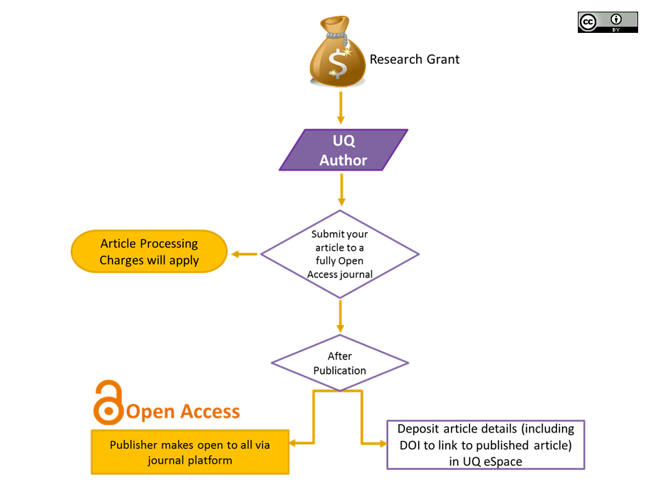 Gold Open Access Model