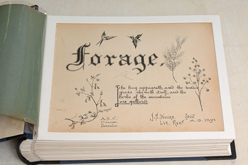 Forage by J.S. Moore